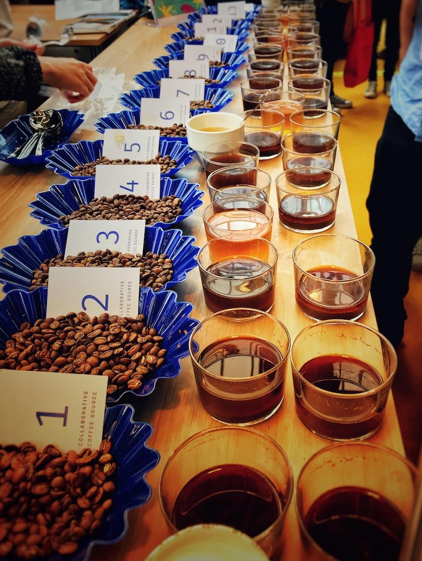 Bester Kaffee auf dem Cupping Tisch