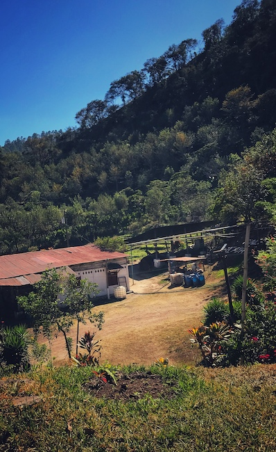 Eine Wet Mill auf einer Kaffee Farm. Wichtig im Kaffeeanbau ist die schnelle Verarbeitung der gepflückten Früchte. Hier beginnt die Reise des Kaffees