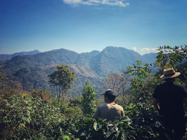 Ein Farmer zeigt stolz seine Farm für Kaffeeanbau. Käufer aus der Wertschöpfungskette schauen sich hier oft sehr genau um, ist es doch der Anfang der Reise des Kaffees.