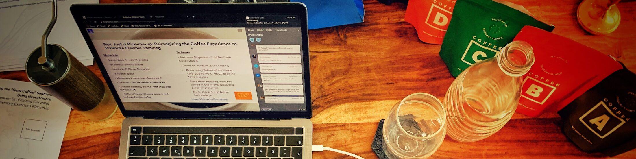 Mein Setup bei einem Online Sensorik Kongress. Sie ständig fortbilden gehört zu Coach sein dazu.