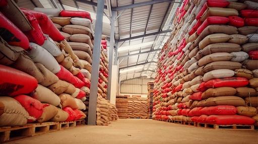 Ein Lager bis zur Decke voll mit Kaffeesäcken bereit für den nächsten Schritt in der Wertschöpfungskette, den Kaffeeexport.