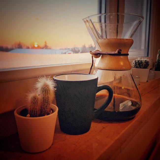 Chemex Filterkaffeekanne sehr beliebt bei Barista. Sie steht auf einem Fensterbrett neben einer schwarzen Kaffeetasse und einem Kaktus. Die Scheibe ist leicht beschlagen und draussen geht die Sonne auf.