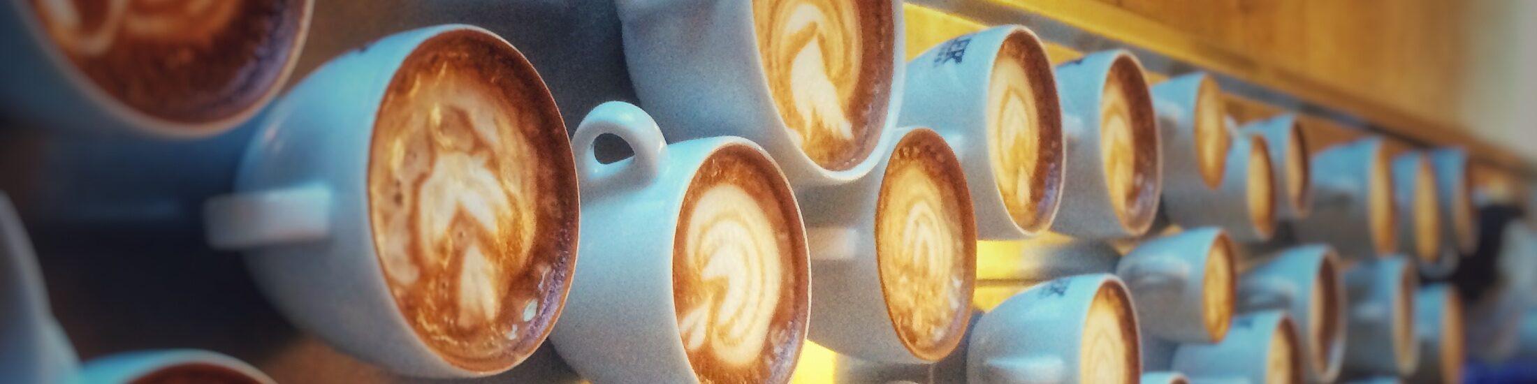 Viele Kaffeetassen mit Latte Art Motiven nebeneinander. Ein Bild aus dem Latte Art Training. Alles steht auf einer Edelstahl Theke.