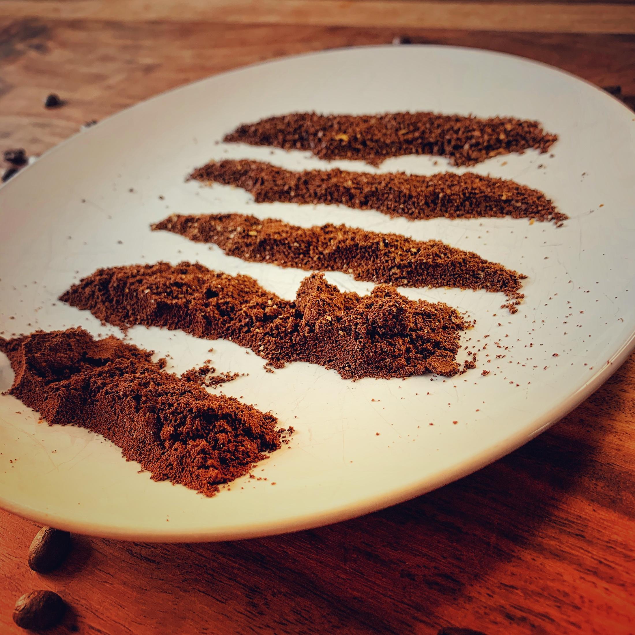 Ein weißer Teller auf einem dunklen Holztisch. Um ihn herum liegen vereinzelt Kaffeebohnen. Wir schauen leicht seitlich auf den Teller und sehen in Reihen nebeneinander verschiedene Stufen von Kaffee Mahlgrad, fein bis grob.