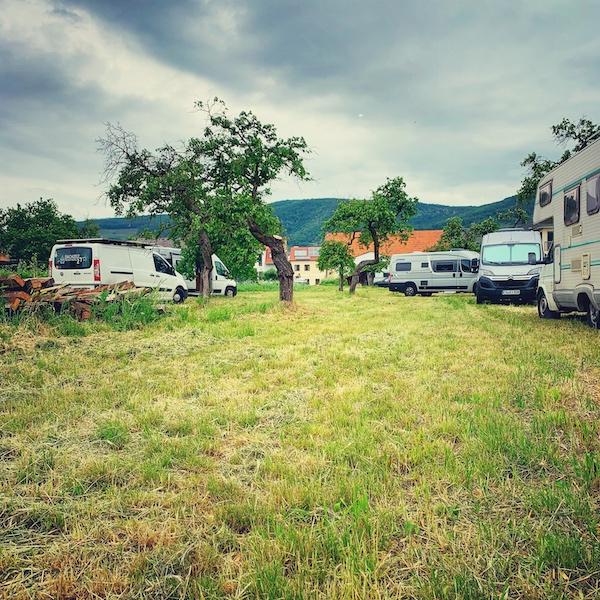 Das zweite Camp im Marillen Garten. Wir sehen eine Streuobstwiese auf der mehrere Camper Vans geparkt sind. Sie bilden das 2. Camp auf der Camper Nomads Workation.