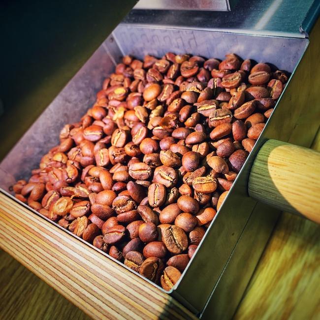 Kaffeebohnen mit hellem Röstgrad direkt nach der Röstung in einem Roest Auskühlgitter.